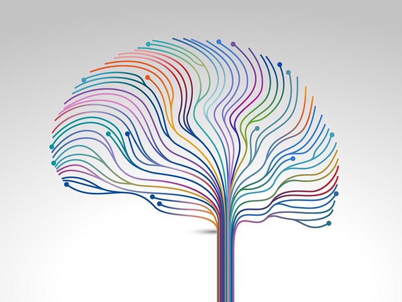 the neuroarchitecture trend