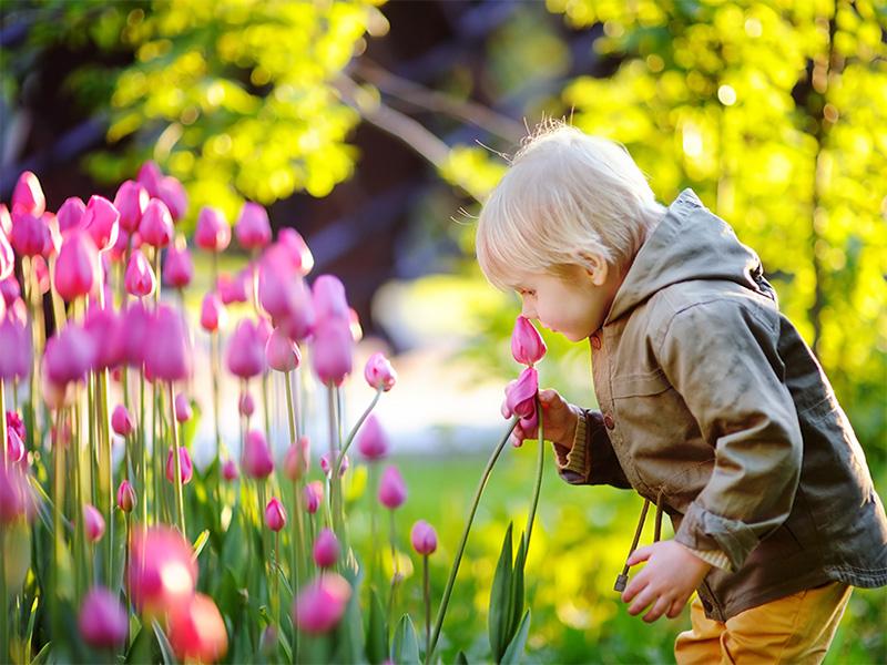 preparing for spring